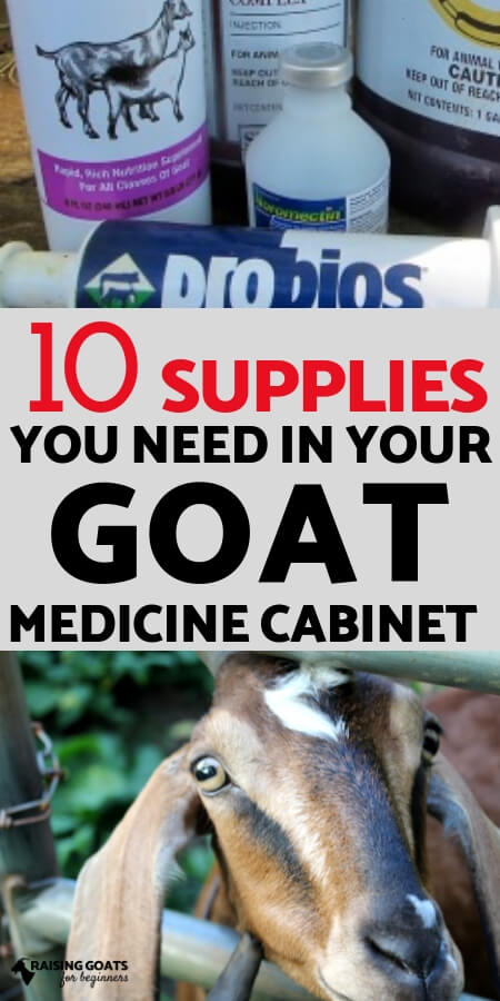 Raising Goats for Beginners: 10 supplies you must keep on hand in your goat medicine cabinet