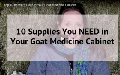 10 Supplies You NEED in Your Goat Medicine Cabinet