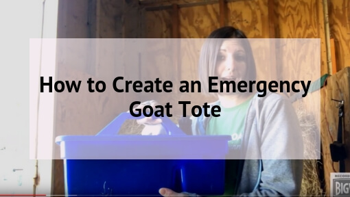 How to Create an Emergency Goat Tote