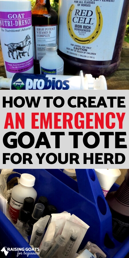 One part of raising goats is always being prepared. Put together a tote of all your most used & emergency items so that you can grab it and go whenever you need it.